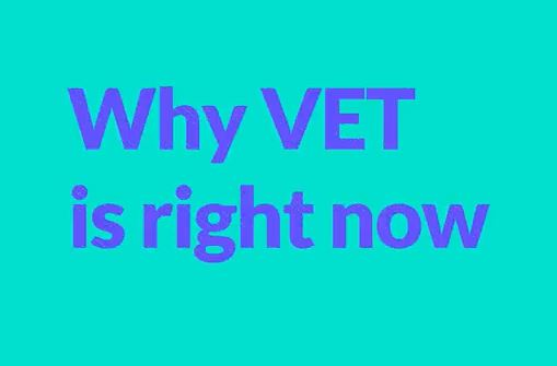 Why VET is right now. - Video Thumbnail
